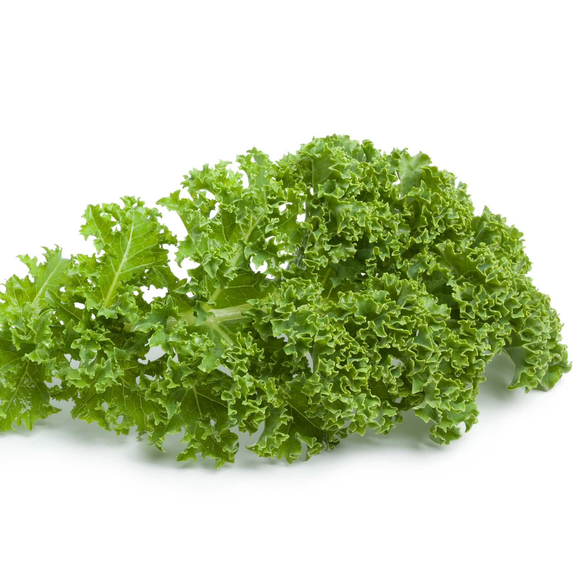 Green kale is loaded with calcium and low in calories. The super-food kale is part of the Sleep Better Diet.