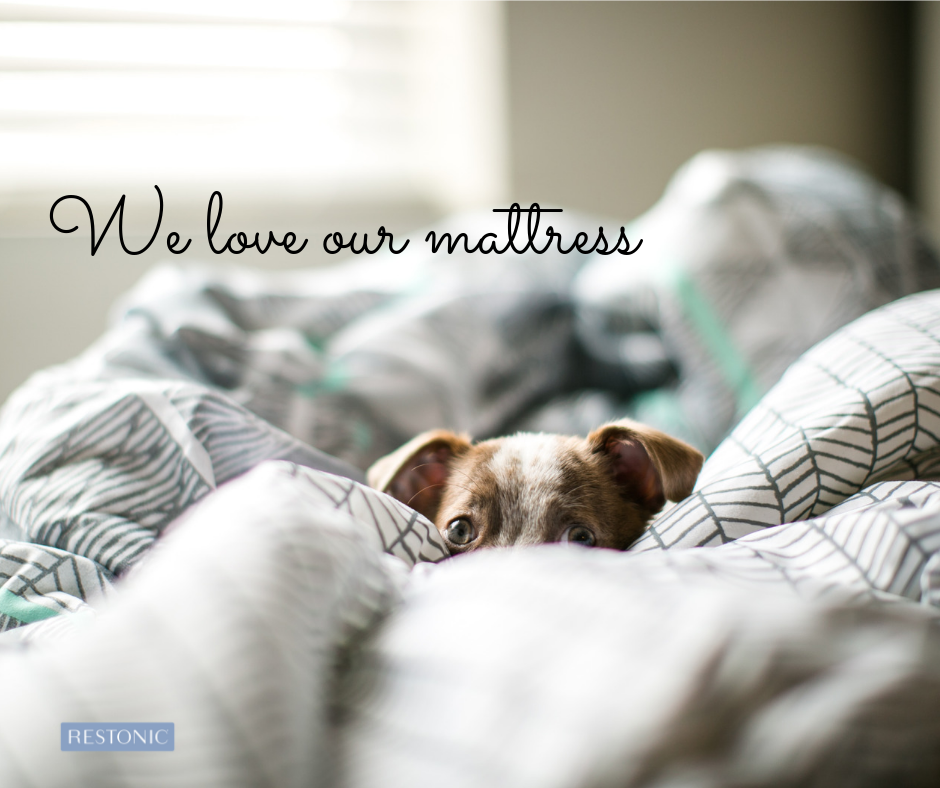 do you sleep with your pets?
