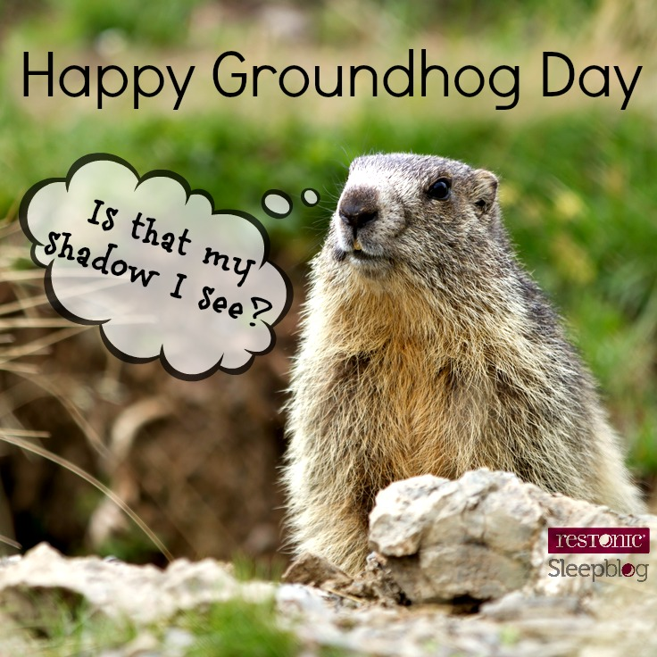 Groundhog Day – What's it got to do with sleep?