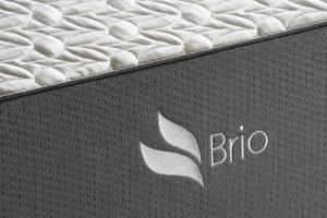 brio_3