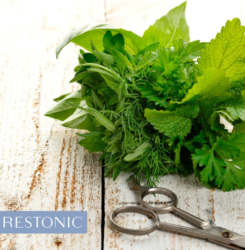 Freshly cut mint leaves that have the power to heal, without ever taking a pill. Exposure to different scents can protect long-term health.
