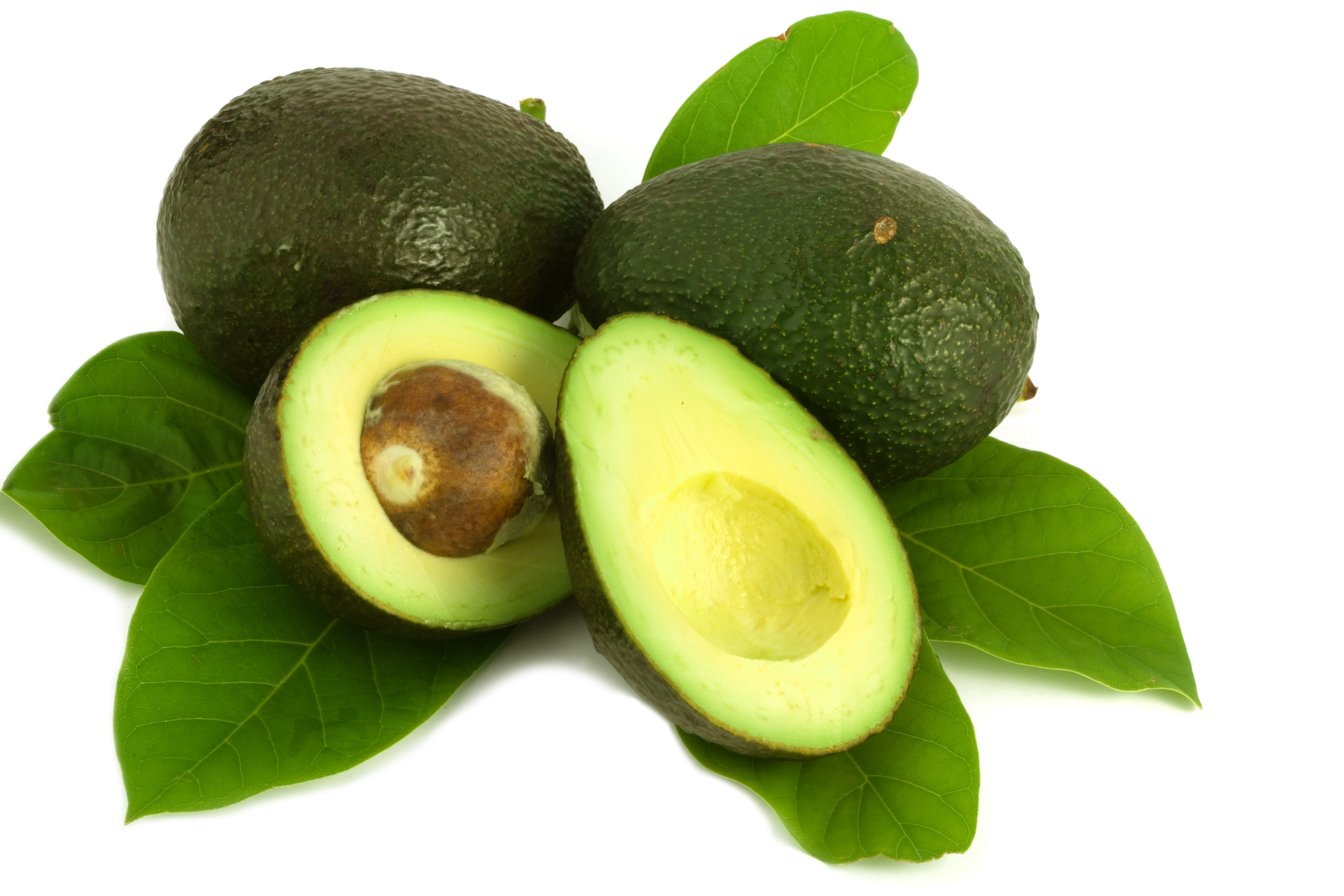 avocados are a nutrient rich snack