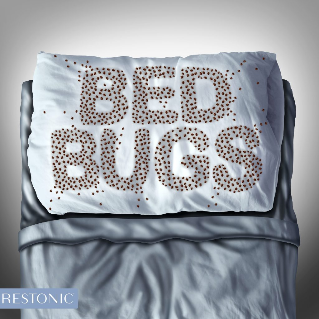 What's lurking beneath your sheets? Hopefully, the answer is no dust mites, no stains, no spills. What should be there is a mattress protector – an essential purchase to safeguard the significant investment you made in a quality mattress.