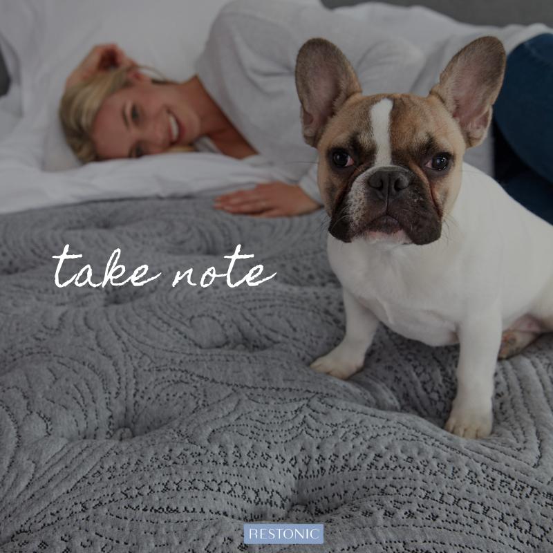 Spací pomůcky pro lepší spánek