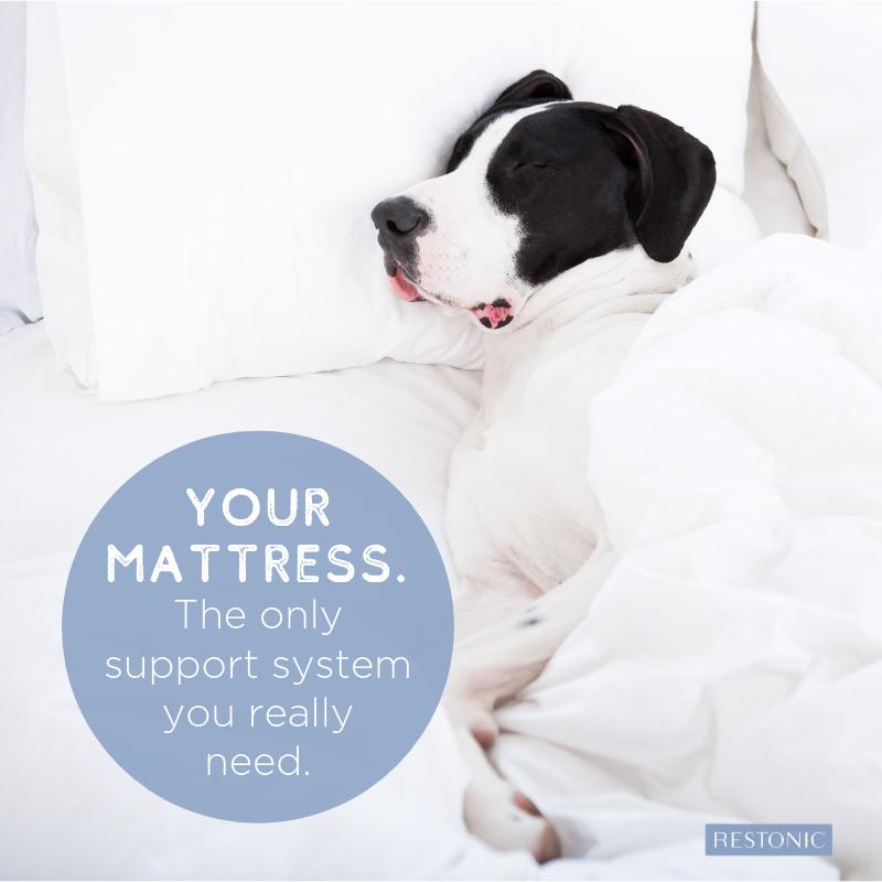 mattress support system