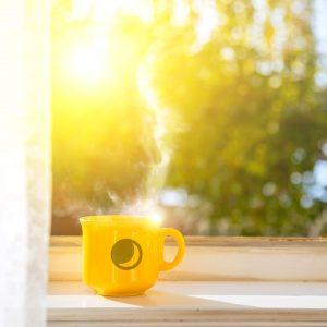 Soak up the morning sunshine