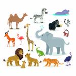 Go on Safari