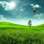 A green field with hot air balloons in the sky.