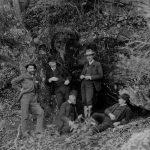 The Forests of Biltmore® – George Vanderbilt's Living Legacy